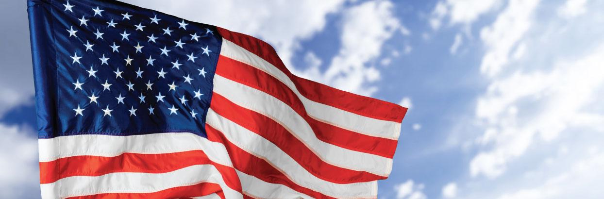 free flag promo